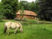 Voorbeeld afbeelding van Bed and Breakfast Pension Groenewoud in Swalmen