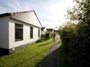 Voorbeeld afbeelding van Bungalow, vakantiehuis Vakantiepark Dennenoord in Den Burg (Texel)