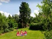 Voorbeeld afbeelding van Bungalow, vakantiehuis Landal Het Land van Bartje  in Ees