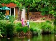 Voorbeeld afbeelding van Bungalow, vakantiehuis Landal Het Vennenbos  in Hapert