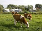 Voorbeeld afbeelding van Hotel Boerderij Hazenveld B&B en minicamping in Kockengen
