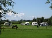 Voorbeeld afbeelding van Kamperen Boerencamping Half-Hichtum   in Bolsward