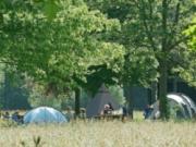 Voorbeeld afbeelding van Kamperen Natuurkampeerterrein Landgoed de Hoevens in Alphen NB