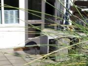 Voorbeeld afbeelding van Appartement Luxe huisje aan Zee in Callantsoog