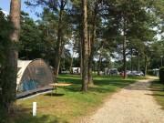 Voorbeeld afbeelding van Kamperen De Hertenhorst in Beekbergen