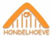 Voorbeeld afbeelding van Groepsaccommodatie Hondelhoeve Groepsaccommodaties in Eext