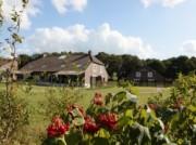 Voorbeeld afbeelding van Bungalow, vakantiehuis Bosrijk De Kuluut in Overloon