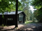 Voorbeeld afbeelding van Bungalow, vakantiehuis De Boshut in Vierhouten