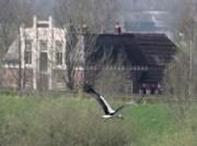 Voorbeeld afbeelding van Hotel Hotel Garni IJsselzicht in Veessen