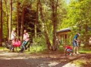 Voorbeeld afbeelding van Bungalow, vakantiehuis Landal Heideheuvel in Beekbergen