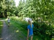Voorbeeld afbeelding van Kamperen Camping Aan Veluwe in Oosterbeek