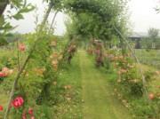 Voorbeeld afbeelding van Bed and Breakfast Fruitproeverij de Zandberg in Rijswijk Gld