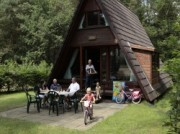 Voorbeeld afbeelding van Bungalow, vakantiehuis Molecaten Park De Koerberg in Heerde