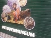Voorbeeld afbeelding van Museum St. IJstijdenmuseum in Buitenpost