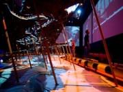 Voorbeeld afbeelding van Museum Maritiem Museum Rotterdam in Rotterdam