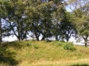 Voorbeeld afbeelding van Bezienswaardigheid Het Eppiesbergje en hunebed D34 in Odoorn