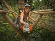 Voorbeeld afbeelding van Dierentuin WILDLANDS Adventure Zoo Emmen in Emmen