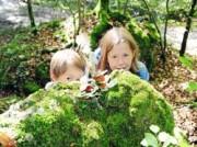 Voorbeeld afbeelding van Attractie, Pretpark Themapark Sprookjesbos in Valkenburg