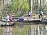 Voorbeeld afbeelding van Speeltuin Natuurspeeltuin de Speeldernis in Rotterdam
