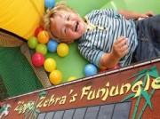 Voorbeeld afbeelding van Speeltuin Zippa Zebra's Funjungle in Hoogeveen