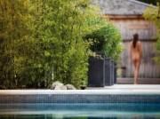 Voorbeeld afbeelding van Sauna, Beauty, Wellness Elysium Centre for Well-being in Bleiswijk
