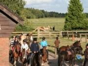 Voorbeeld afbeelding van Paardrijden, Manege, Huifkar Ruitercentrum het Fjordenpaard in Een