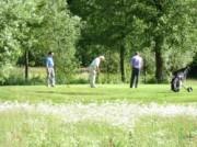 Voorbeeld afbeelding van Golfen, Minigolf   Golfbaan 't Zelle in Hengelo Gld