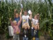 Voorbeeld afbeelding van Speeltuin Groot Sallands Maisdoolhof  in Lemelerveld