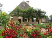 Voorbeeld afbeelding van Museum Veluws Museum Hagedoorns Plaatse in Epe