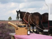 Voorbeeld afbeelding van Paardrijden, Manege, Huifkar Stalhouderij Wouter Hazeleger in Otterlo