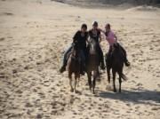 Voorbeeld afbeelding van Paardrijden, Manege, Huifkar The Mill Ranch  in Ede