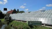Voorbeeld afbeelding van Bezienswaardigheid Historische Druivenkwekerij Sonnehoeck in Kwintsheul