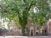 Voorbeeld afbeelding van Museum Museum Rijswijk in Rijswijk Z-H