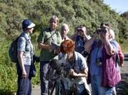 Voorbeeld afbeelding van Groepsactiviteiten Vogelsafari Calidris in De Cocksdorp (Texel)