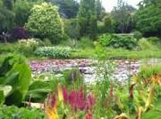 Voorbeeld afbeelding van Tuinen, Kunsttuinen De Vijvertuinen van Ada Hofman in Loozen